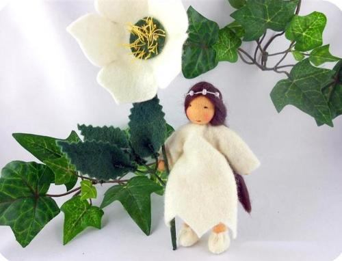 Christrose - Blumenkind Jahreszeitentisch