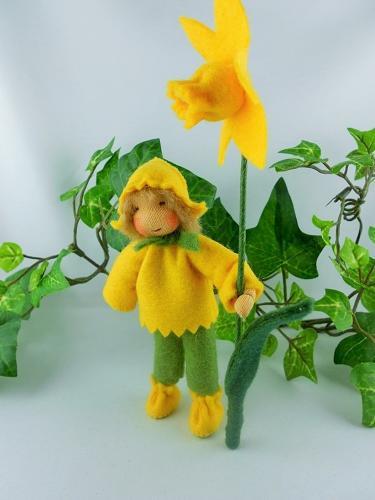 Narzisse / Osterglocke - gelb - Junge Blumenkind